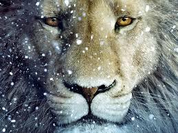 Aslan Snow